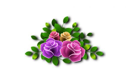 arkkukukat, tuoreet kukat